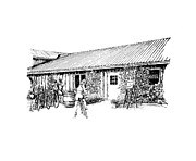 Vineyard Drawings Prints - Marynissen Winery Bike Tours Print by Steve Knapp