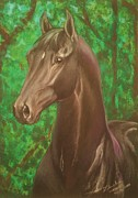 Stallone Pastels - Mashius- black warmblood stallion by Dorota Zdunska