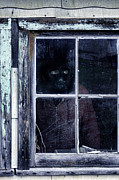 Frightening Posters - Masked Man Looking Out Window Poster by Jill Battaglia