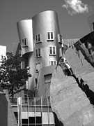 Frank Gehry Prints - Massachusetts Institute of Technology Stata Center Print by University Icons