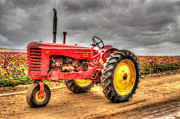 Machinery Photo Posters - Massey Poster by Heidi Smith