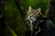 Pets Art Digital Art Originals - Master of Disguise by Marina Likholat