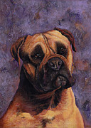 Mastiff Dog Paintings - Mastiff by Darlene Fletcher