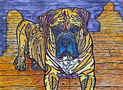 Mastiff Dog Paintings - Mastiff by Jamie Winters