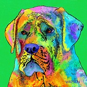 Cute Dog Digital Art - Mastiff by Marlene Watson