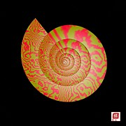 Spiral Metal Prints - Math Conch Metal Print by GuoJun Pan