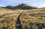 Walk Paths Prints - Matterhorn Peak - Colorado Print by Aaron Spong