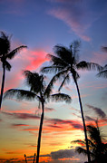 Tropical Sunset Prints - Maui Tropical Sunset  Print by Kelly Wade