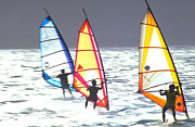 Jpeg Photo Prints - Maui Windsurfers Print by Douglas Peebles