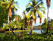 Palm Trees Framed Prints - Mauna Lani Fish Ponds Framed Print by Kurt Van Wagner