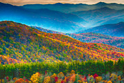 Appalachian Posters - Max Patch Bald Fall Colors Poster by John Haldane
