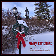 Patricia  Paterson - May Christmas Bring You...