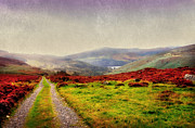 Green Grass Prints - May it Be Your Journey On. Wicklow Mountains. Ireland Print by Jenny Rainbow