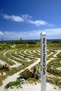 Meditation Prints - May Peace Prevail on Earth Peace Labyrinth Aruba Print by Amy Cicconi