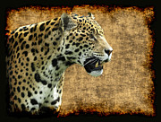 Mayan Jaguar Prints - Mayan Lord Print by Val Brackenridge