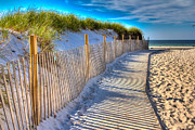 Sand Fences Posters - Mayflower Beach Dunes Poster by Monsoon Photo
