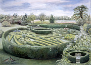 Natural Beauty Painting Framed Prints - Maze Framed Print by Ariel Luke