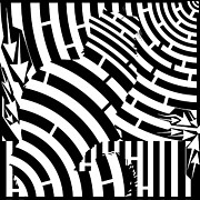 Op Art Digital Art Posters - Maze of Cat on Fence Op Art Poster by Maze Op Art Artist