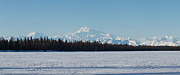 Alaska Photos - Mckinley Blue by Ed Boudreau