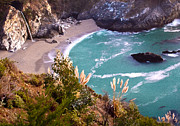 David Millenheft - McWay Falls Big Sur