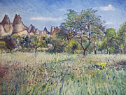 Enver Larney - Meadow at Goreme...