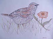 Wings Artwork Mixed Media Prints - Meadow Bird Print by Jan Rotz
