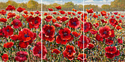 Poppies Field Painting Originals - Meadow Serenity by Roman Czerwinski