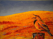 Carolyn Doe - Meadowlark in fields