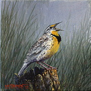 Meadowlark Paintings - Meadowlark by Kirt Harmon