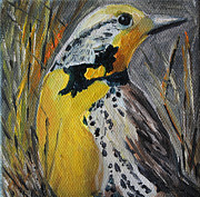 Meadowlark Paintings - Meadowlark by Michelle  Bradsher