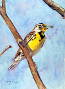 Meadowlark Paintings - Meadowlark Sunrise by Marsha Karle