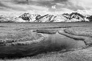 Owens River Art - Meander - black and white by Ei Katsumata