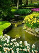 Meandering Stream In Spring Flower Garden Keukenhof Near Lisse Netherlands Print by Robert Ford