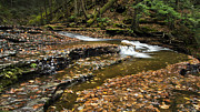 Creeks Prints - Meandering Waters Print by Christina Rollo