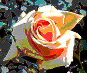 Roses Digital Art - Medallion Rose by Alys Caviness-Gober