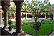 New York City Photo Originals - Medieval Garden at The Cloisters New York by Dora Sofia Caputo