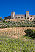 Chianti Vines Photo Prints - Medieval Walled Village Of Monteriggioni Chianti Tuscany Italy Print by Mathew Lodge