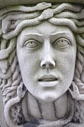 Medusa Metal Prints - Medusa Metal Print by Eric Soderman