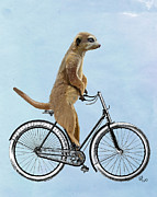 Meerkat Digital Art Prints - Meerkat on a Bicycle Print by Loopylolly