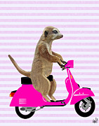 Wall Decor Greeting Cards Prints - Meerkat on a Pink Moped Print by Kelly McLaughlan