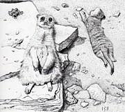 Meerkats Print by Inger Hutton