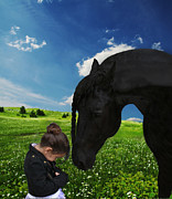 Black Stallions Prints - Meeting of Minds Print by Pinnacle Friesians