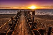 Svetlana Sewell - Meeting  Sunset