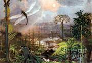 Meganeura In Upper Carboniferous Print by Science Source