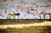 Dan Carmichael - Memories of Frisco Pier - Outer Banks II