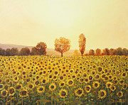 Golden Sunlight Paintings - Memories of The Summer by Kiril Stanchev