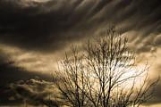 Mick Anderson - Menacing Winter Sky