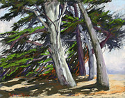 Area Pastels Prints - Mendocino Cypress Print by Patricia Rose Ford