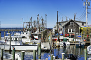 Fishing Village Framed Prints - Menemsha Harbor Framed Print by John Greim