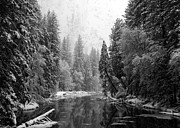 Bill Gallagher Posters - Merced River Winter Poster by Bill Gallagher